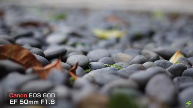 単焦点レンズのデジイチ動画!【Canon EF50mm F1.8 II】萱野三平邸でテスト撮影。