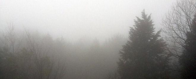 霧の山、予想外の撮影となった一日。Is the fog good for filming?