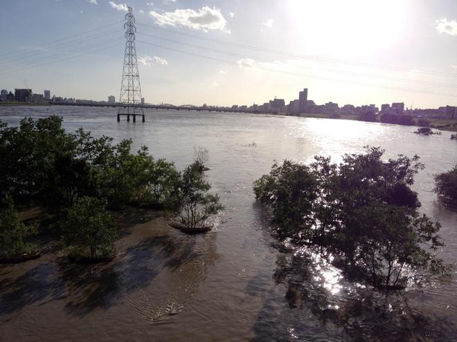 淀川が氾濫ギリギリ?けっこうヤバかったとわかる台風一過。