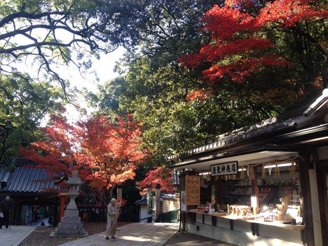 秋晴れの良い天気。【清荒神(兵庫県・宝塚)】で紅葉を楽しむ。