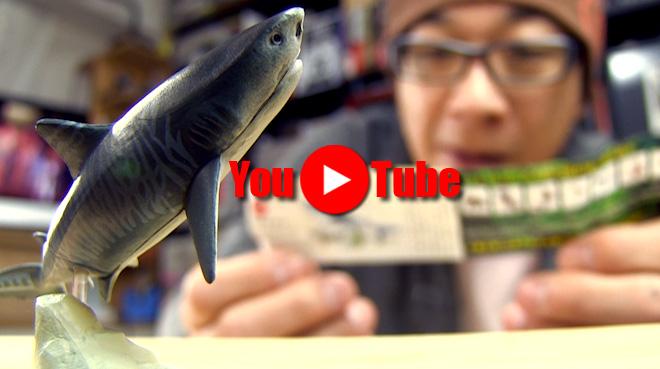 【日本の動物コレクション⑦八重山諸島/ヤマネコの島】虎の鮫!その正体はイタチザメ。【1回目】海洋堂カプセルQミュージアム