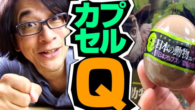 【日本の動物コレクション⑧日本アルプス/雷鳥が棲む岳】山のネズミ?【2回目】海洋堂カプセルQミュージアム