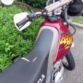 XR250 BAJA
