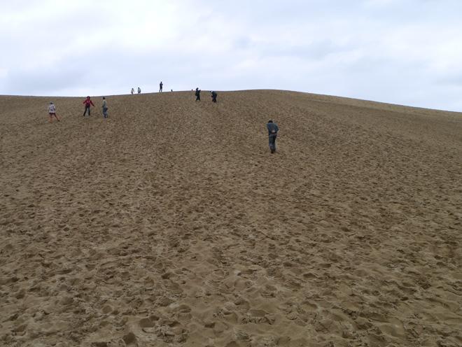 【鳥取砂丘】に行ってみた!荒天だったが自然の大きさ、砂の世界を堪能。