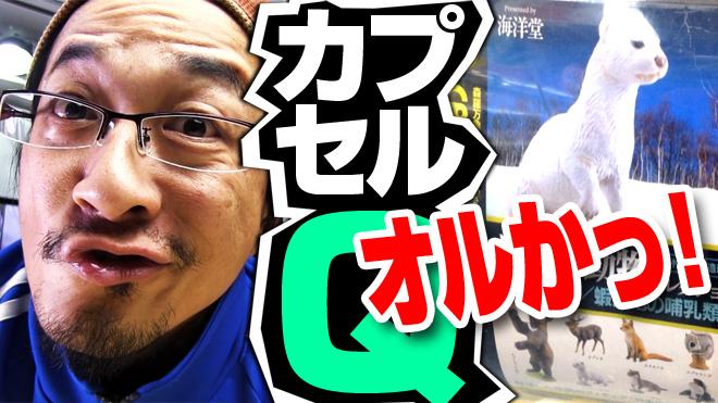 【日本の動物コレクション⑥北海道/蝦夷地の哺乳類】【1回目】海洋堂カプセルQミュージアム