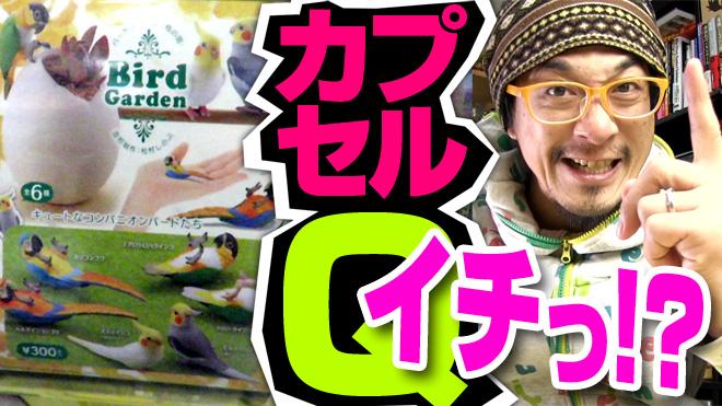 鳥ってセンチメンタル?【バードガーデン/鳥の庭①】海洋堂カプセルQミュージアム