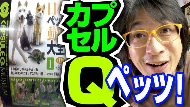 犬、猫・・・次は?【日本ペット大全①】海洋堂カプセルQミュージアム