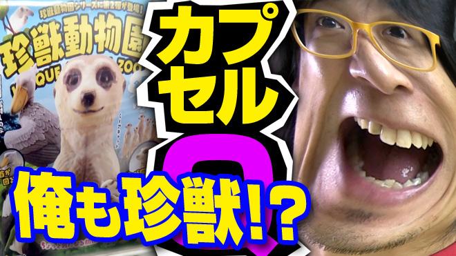 【珍獣動物園②】第2弾が出るとは思ってなかったよっ!【1回目】海洋堂カプセルQミュージアム