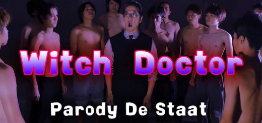 De Staat Which Doctor Parody